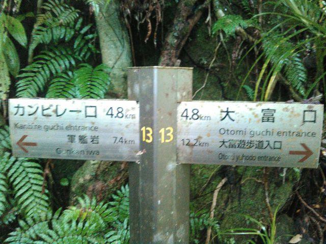 西表島横断に行ってきました。